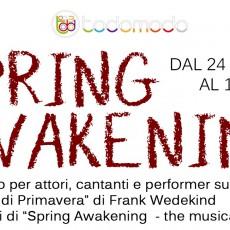 SPRING AWAKENING – Studio per Attori, Cantanti e Performer a Torino